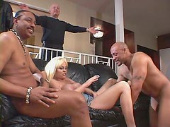 Reparto - Collection of sizzling babes giving head and staging in group sex videos