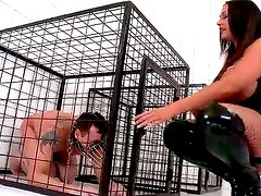 Submissive dude is getting punished by stern mistress