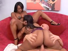 Big ass black sluts share his white cock