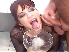 Sperm Drinking From Bowl