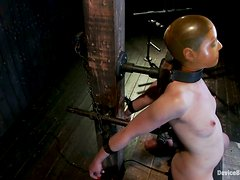 A lot of pain for Sarah Shevon in a single BDSM scene