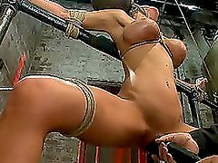 Busty Slut Hogtied and Fucked Hard With Toys