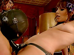 Four Babes Teasing a Submissive Guy