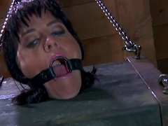 Submissive tied up brunette Tricia Oaks has to bend over showing her cunt