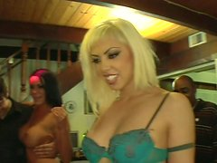 Gorgeous bitches Savannah Stern, India Summer and Satine Phoenix arrive to the orgy party