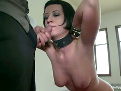 Bella Rossi and Cherry Torn test some new toys and suck a dick