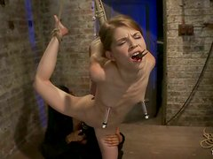 Sensi Pearl Hangs from the Ceiling and Gets Nipple Torture in BDSM Vid