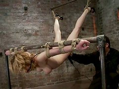 Gagged Lily Labeau gets tied up and tortured by two guys