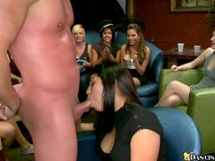 Lustful girls suck strippers' dicks at the wild party