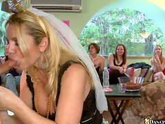 Sexy chicks suck a dick passionately at the hen party