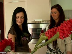 Aletta takes a cooking class and gets her tits out