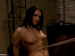 Cocktail of Pleasure and Pain in BDSM Sex Video for Brunette