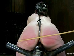 Ass spanking joy for a kinky brunette babe Maggie
