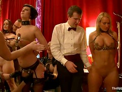 Three tied up chicks give a titjob and get toyed