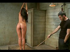 Lovely Girl Gets Full BDSM Training