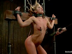 HOney is hanged upside down and twitched on her tits