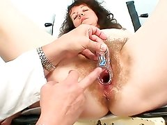 Old mature bitch gets her hirsute examined at the hospital
