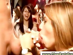 Ladies cocksucking in cfnm party