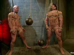 Crazy Bondage and Gay Ass Fucking in BDSM Threesome
