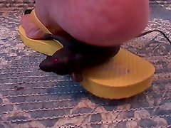 Toy Rat trample Crush under Flip Flops