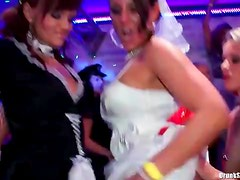 Costume party at night club with dancing girls