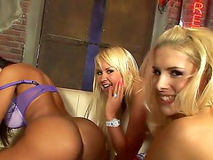Naughty young lesbian girlfriends Amelie, Brandy Smile and Lisa Ann are licking