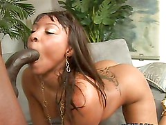 Rough sex with a black monster cock for the hot Roxy Reynolds