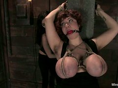 Curly MILF with huge boobs gets fisted in bondage video