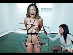 Bound cutie is electrified by dominant electro whore