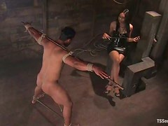 Shemale Dominatrix Playing with Her Submissive Sex Slave