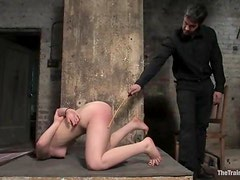 Luxury sex slave is sucking cock in pain