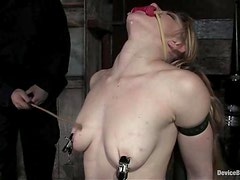 Tawni Ryden gets her tits tortured and pussy stuffed