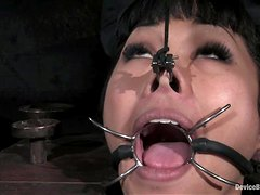 Asian chick gets her ass and pussy stuffed in bondage video