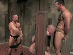 Three horny gays enjoy playing BDSM games in a basement