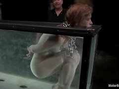 Juicy redhead honey get suspended and dipped