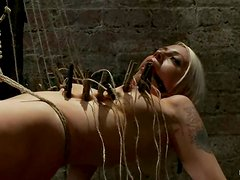 Stunning blonde girl gets clothesspinned and toyed