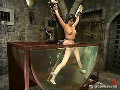 Hungry for submission Maya gets bondaged and dunked