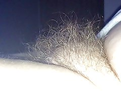 the puffy hairy bush of my wife.