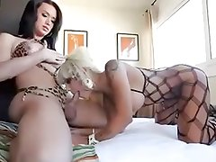 Sexy wild shemale in a great action with a hot girl!
