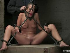 Jade Marxxx gets tortured and toyed by Claire Adams