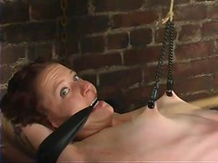 Slender Nina gets hog tied and suspended in bondage vid