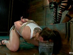 Luscious honey is being tortured so fucking hard
