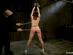Casey Calvert gets tormented and spanked and enjoys it much