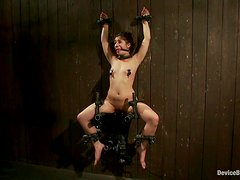 Sassy redhead gets a brutal insertions in a bondage