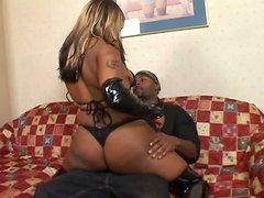 Blonde Ebony Sucks And Gets Fucked Doggystyle In Her Asshole