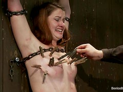 Sofia Lauryn gets pinched and fucked with a toy in a basement