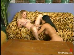 Animal Print Brings Out The Animal Instinct On These Horny Lesbians!