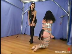 Brunette chick gets tied up and whipped by her mistress