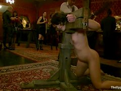 Hot chicks get whipped and toyed deep in bondage video