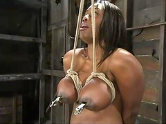 Big tittied ebony girl gets tied up and clothespinned